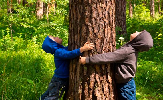 la naturaleza es la casa de todos. Desde Ecoembes y Bosquescuela somos conscientes de ello, y por eso, nos hemos unido para fomentar la educación ambiental en las aulas.