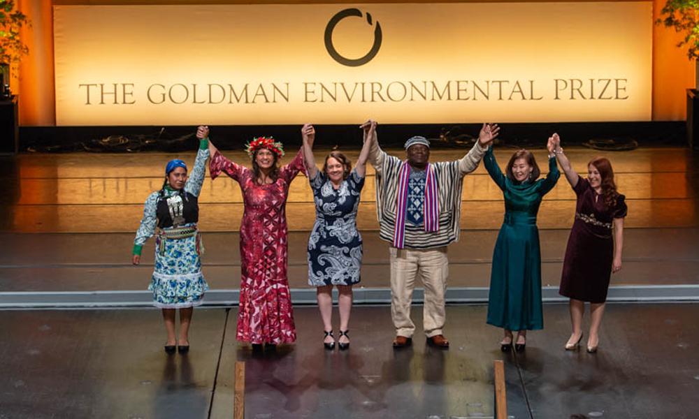 Goldmam prize 2019